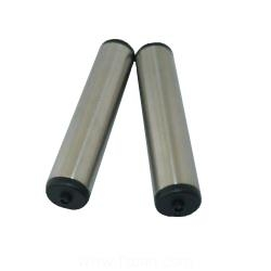 Stainless steel electrodes